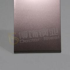 304高比打砂镀褐金不锈钢+亮光防指纹