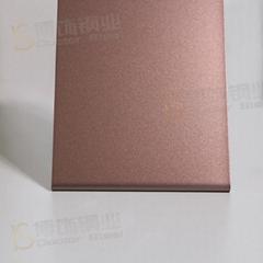 304高比打砂鍍咖啡紅不鏽鋼+亮光防指紋