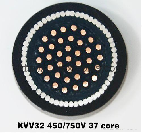 銅芯聚氯乙烯絕緣護套編織屏蔽細鋼絲鎧裝控制電纜 2