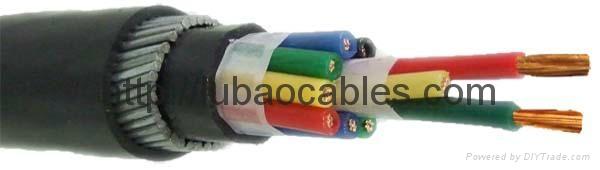 銅芯聚氯乙烯絕緣護套編織屏蔽細鋼絲鎧裝控制電纜 3