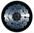 鋁芯交聯聚乙烯絕緣架空電纜 1
