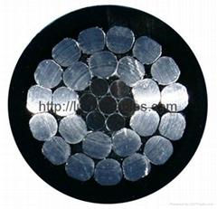 鋁芯交聯聚乙烯絕緣架空電纜