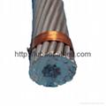 鋁絞線鋼芯鋁絞線(可出口) 4