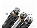 YJH   (TC90)交聯聚乙烯絕緣聚氯乙烯護套鋁合金電力電纜  1