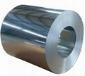 zinc coated steel coil 1