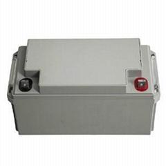 广东UPS蓄电池供应商12V65AH