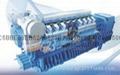 韩国现代燃气发电机组