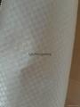 paper-plastic composite bag