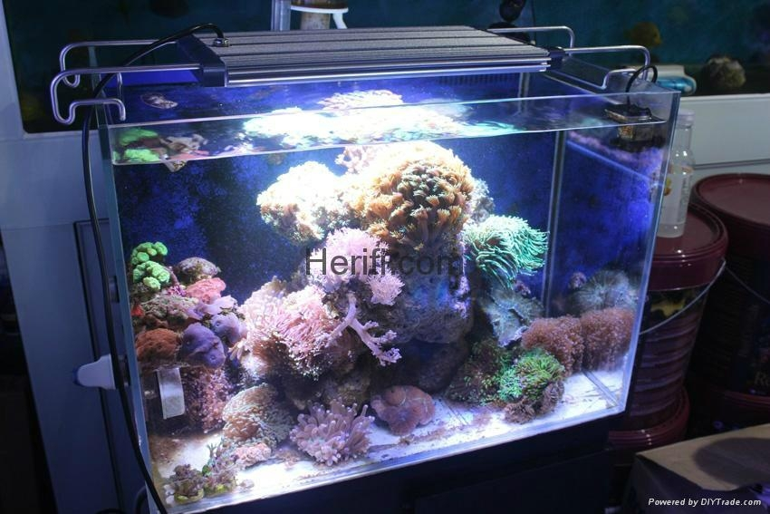 2016 best selling reef light 120w dimmable led aquarium lighting  1
