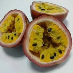Frozen passion fruit.jn