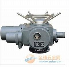 扬州罗托克DZW系列电动装置