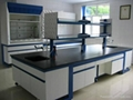 lab wall bench with reagent rack