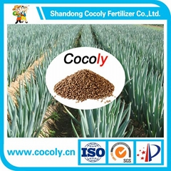 Water Soluble granular fertilizer Plus Organic Fertilizer