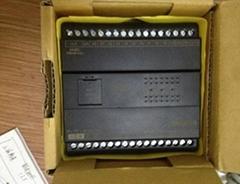 永宏B1Z-32MR2-D24特價plc