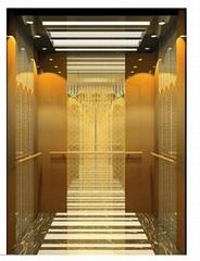 Economic passenger elevator from Delfar