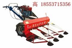 供应湖南4G80型辣椒收割机