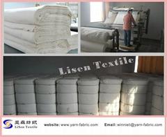 T/C 90/10 45S*45S unbleached poplin fabric