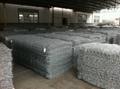 供应金照优质热镀锌石笼网 1