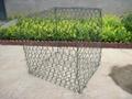 供应金照优质热镀锌石笼网 2