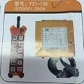 无线工业遥控器F21-10S