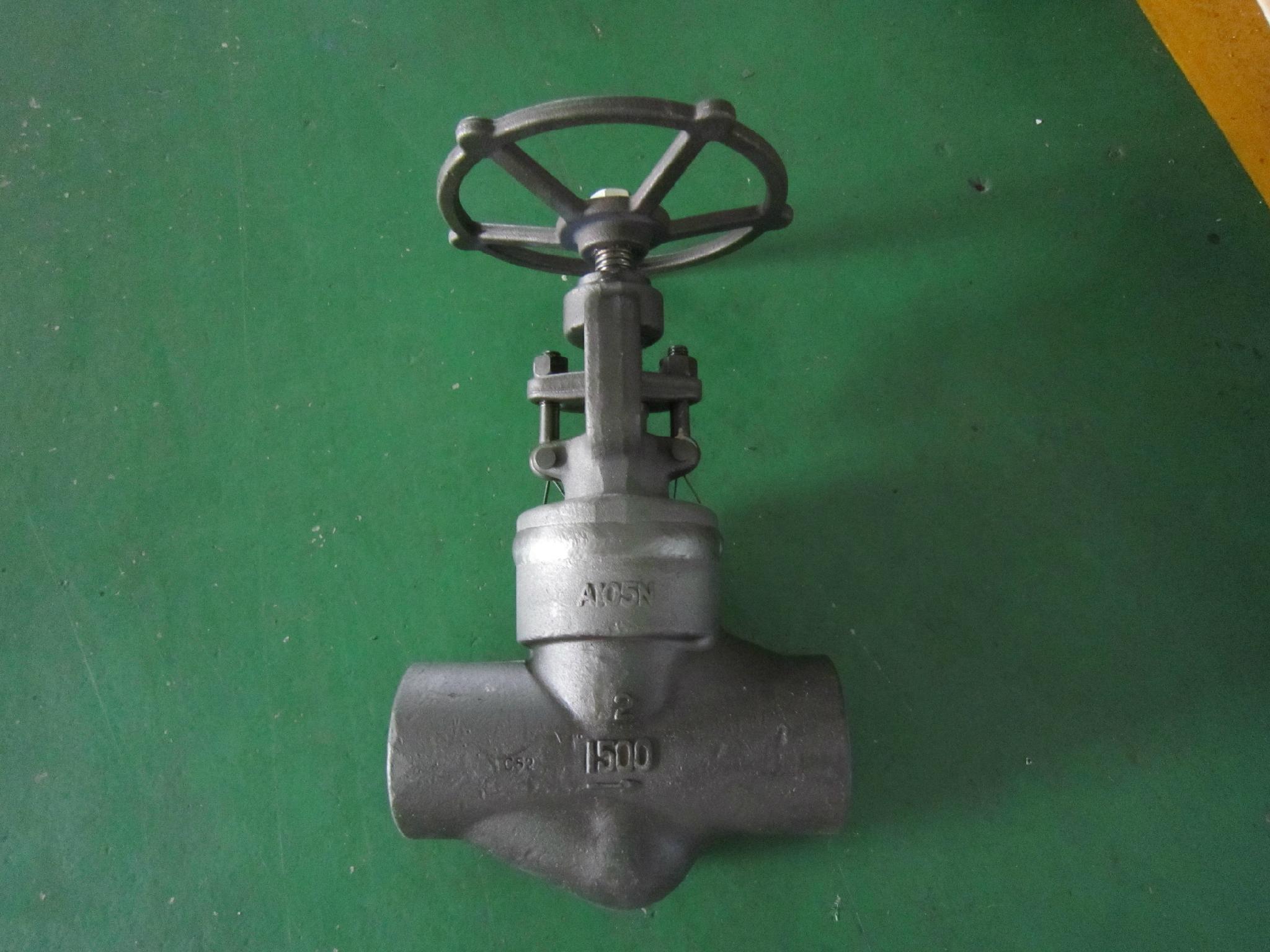 API/ANSI forged  globe valve 2