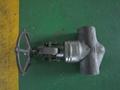 API/ANSI forged  globe valve 5