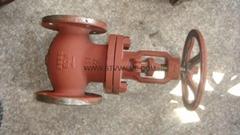 API/ANSI cast globe valve