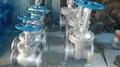API/ANSI cast globe valve 3