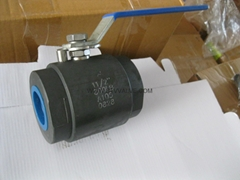 2pc Class 800 Forged ball valve