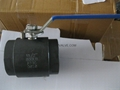 2pc Class 800 Forged ball valve 2