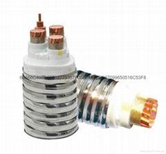 HFTGB不鏽鋼金屬護套系列柔性合成礦物絕緣防火電纜