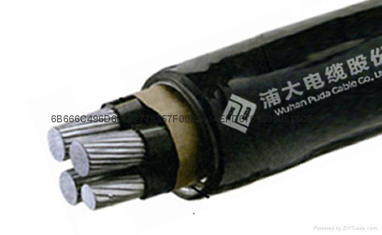 YJH  22 交聯聚乙烯絕緣鋼帶鎧裝鋁合金電纜 1
