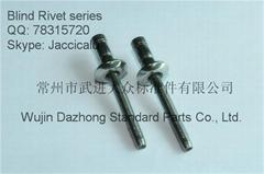 直徑4.8 6.4不鏽鋼拉絲鉚釘