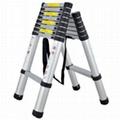 Telescompic Aluminum Ladder
