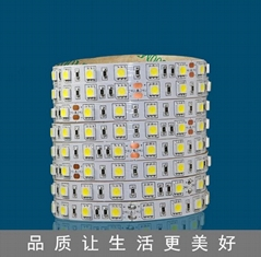 5050一米60燈單色LED不防水軟燈條