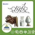 High Quality Betulin White Birch Bark