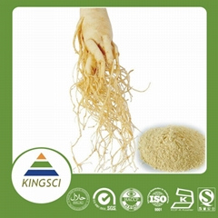 factory supply high quality ginseng extract 20% 80% ginsenosides pwoder