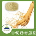 factory supply high quality ginseng extract 20% 80% ginsenosides pwoder 5