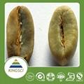 绿咖啡豆提取物50%绿原酸 1