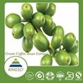 绿咖啡豆提取物50%绿原酸 4