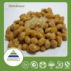 100% Natural Natto Extract Powder
