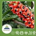 best quality guarana seed extract powder