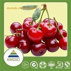 100% Natural Acerola Cherry Fruit Extract 17% 25% Vitamin C