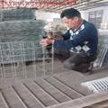 factory gabion basket price and gabion