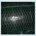 2017 hot sale galvanized  hexagonal poultry wire  chicken wire mesh 1