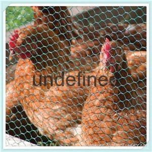 2017 hot sale galvanized  hexagonal poultry wire  chicken wire mesh 5