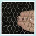 Chicken wire   Galvanized Hexagonal Wire