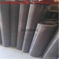 Molybdenum wire mesh Molybdenum wire cloth Molybdenum filter wire mesh