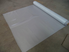PVC Waterproof Material for Roof with Great Quality From China