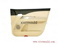 Plastic mould for Car door